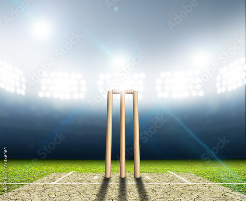 Cuadros en Lienzo Cricket Stadium And Wickets