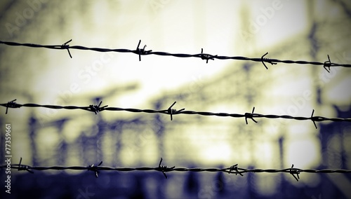 Fotografie, Obraz  lines of barbed wire to demarcate the border during the war