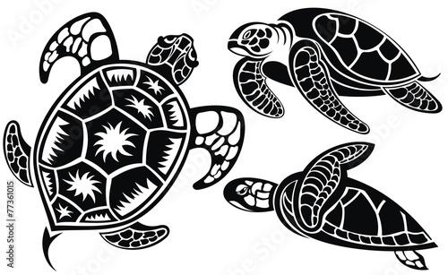 Vector illustration of turtles Wallpaper Mural