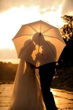 Wedding Couple In The Evening Hiding Under The Umbrella.