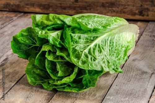 Obraz ripe organic green salad Romano - fototapety do salonu