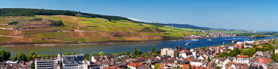 Panorama vom Rhein mit Bingen, Rüdesheim, Germania u.a.