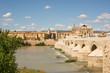 Córdoba y el Puente Viejo