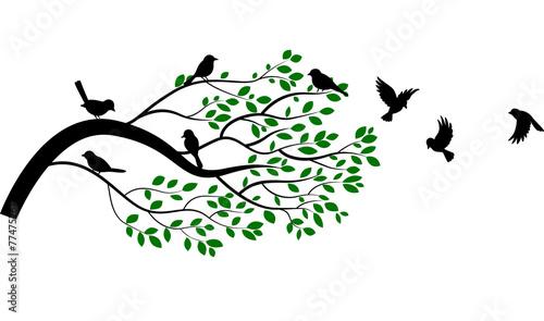 Ilustracja gałąź z ptasią sylwetką
