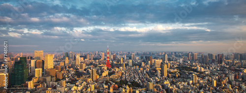 Staande foto Tokyo Tokyo aerial panoramic view