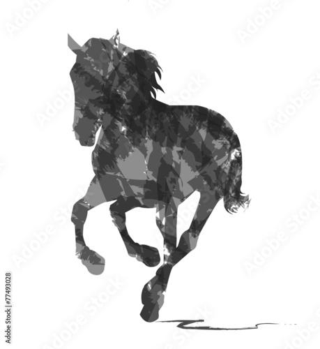 Fototapeta  silhouette astratta di cavallo selvaggio