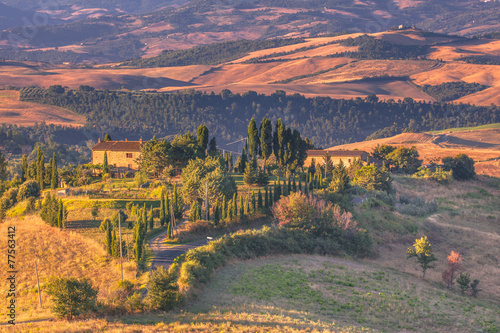 Canvas Prints Hill Tuscany Landscape in the Morning
