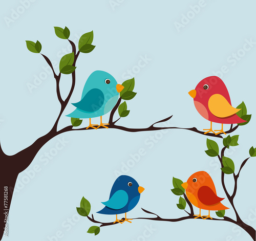 Photo  Bird design, vector illustration.