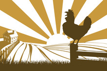 Rooster Chicken Silhouette Cro...