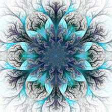 Beautiful Fractal Flower In Blue And Gray. Computer Generated Gr