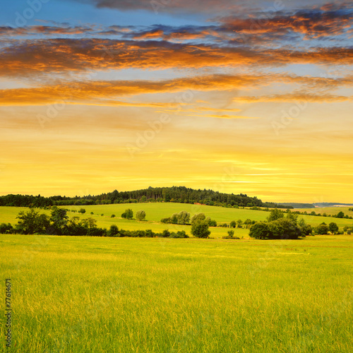 Poster Miel Sunset above the spring landscape