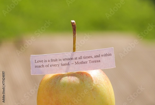 Photo Love is the fruit quote balanced on an apple in natural light