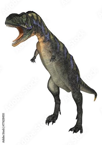 Photo  Dinosaur Aucasaurus