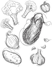 Vegetable Medley Sketches