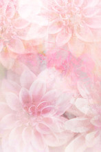 Beautiful, Artistic, Floral Background