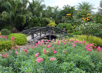 Fototapetalandscape of floral gardening with pathway and bridge in garden
