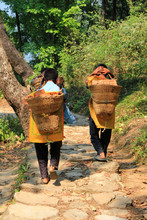 Boys Carrying Basket Full Of Bricks Down The Mountain In Pokhara