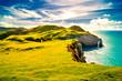 Leinwandbild Motiv Irlands Küste
