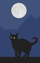 Black Cat & Full Moon