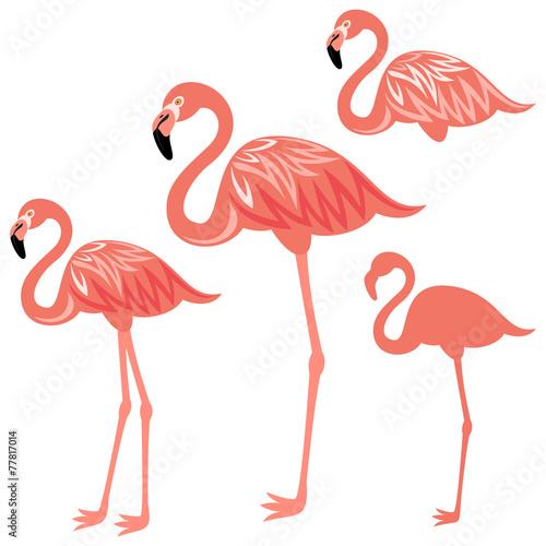Canvas Prints Flamingo