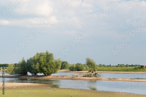 Photo Stands Roe River in Holland