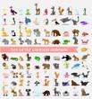 Супер набор из 92 мило мультфильм животных