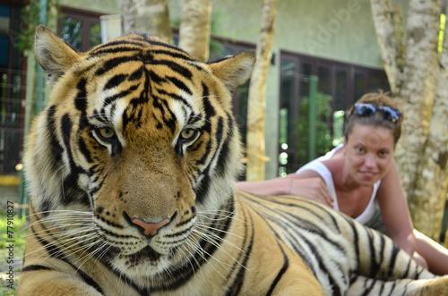 In de dag Tijger Woman with a tiger in captivity