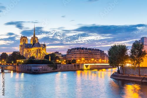 Foto op Aluminium Rudnes Notre Dame Cathedral Paris dusk