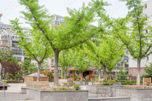 Fotobehang Tuin Yangzhou