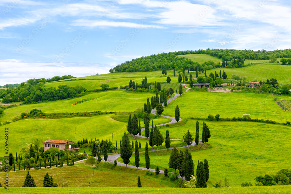 Beautiful landscape of Tuscany with  twisting road