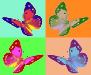 Panel Szklany Do pokoju dziewczyny pop art Colias butterfly