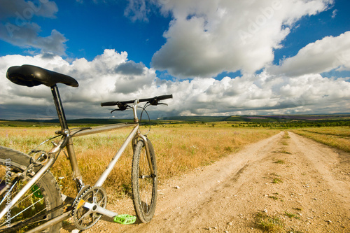 Deurstickers Fiets bicycle on a field with road