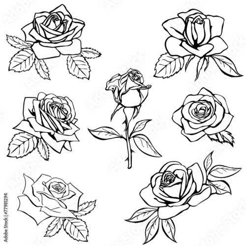 Set Rose Sketch Buy This Stock Vector And Explore Similar