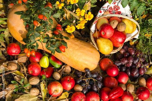Fotografie, Obraz  Still life of fruit and vegetables in the garden