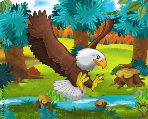 Staande foto Kids Cartoon scene - wild Asia animals - Caricature - eagle - illustration for the children