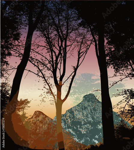Foto op Aluminium Koraal Mountain landscape with silhouettes of trees at sunset