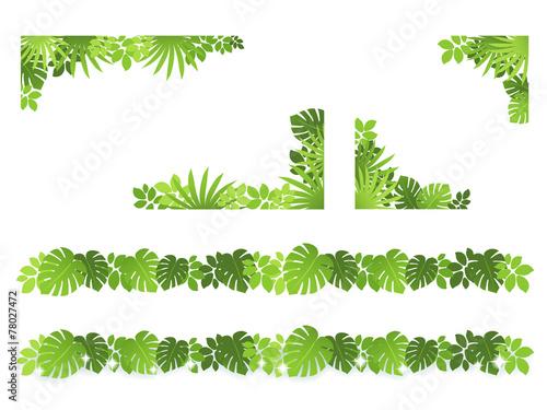 Fotografering 植物 枠 装飾