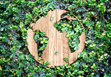 Eco Concept :Wood Texture World Icon On Green Leaves Wall