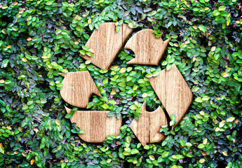 FototapetaEco concept :Wood texture Recycle icon on green leaves wall