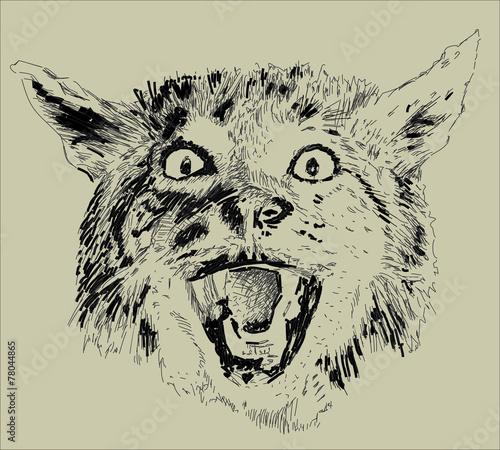 Deurstickers Hand getrokken schets van dieren animals cat