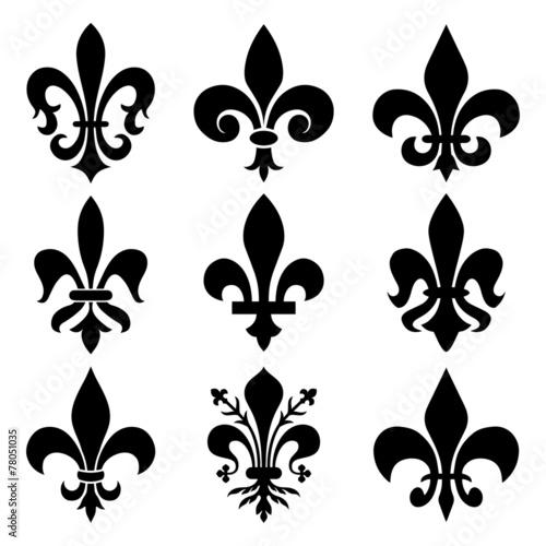 Fotografia  Royal Lily Symbol