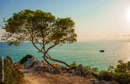 Poster Mediterraans Europa Evening landscape over Mediterranean Sea of La Pineda in Spain