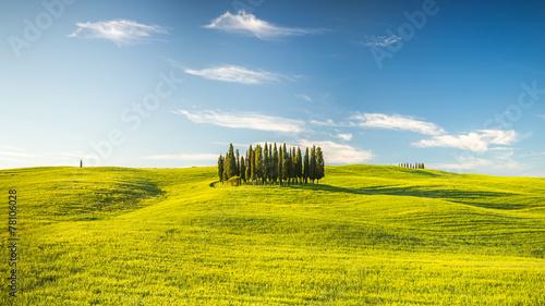 Obraz Tuscany at spring - fototapety do salonu