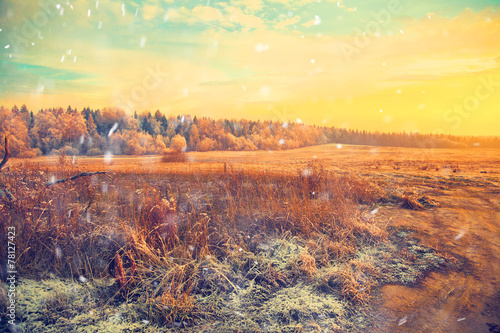 Poster Geel Winter landscape at sunset, field, forest, snow falls
