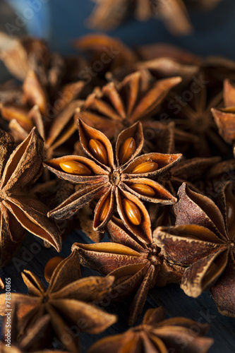 Organic Dry Star of Anise Canvas Print