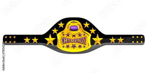 Fotografie, Obraz  Champion Belt
