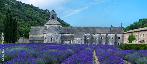 Abbey of Semanque, Provence, France. - 78143277