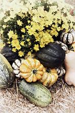 Autumn Outdoor Squash And Mums Decor
