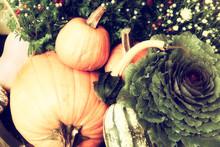 Autumn Outdoor Decor - Retro