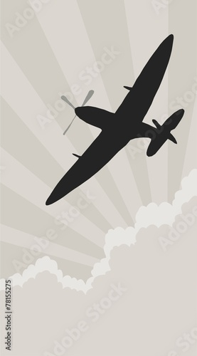 Fotografie, Obraz spitfire silhouette